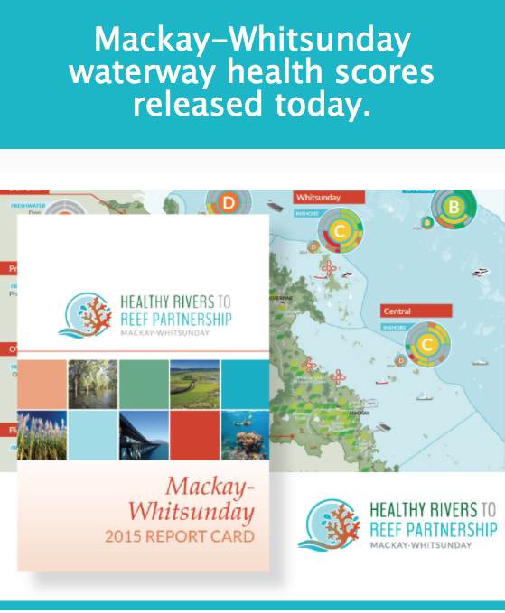 Healthy Rivers to Reef partnership report card