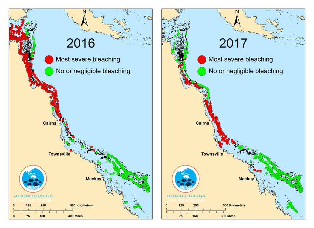 Coral bleaching map for 2016 and 2017.