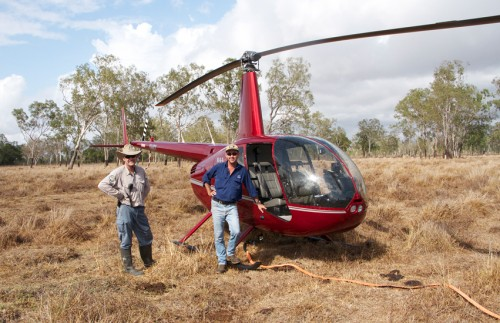 Helicopter used in feral pig eradication program in the Whitsundays