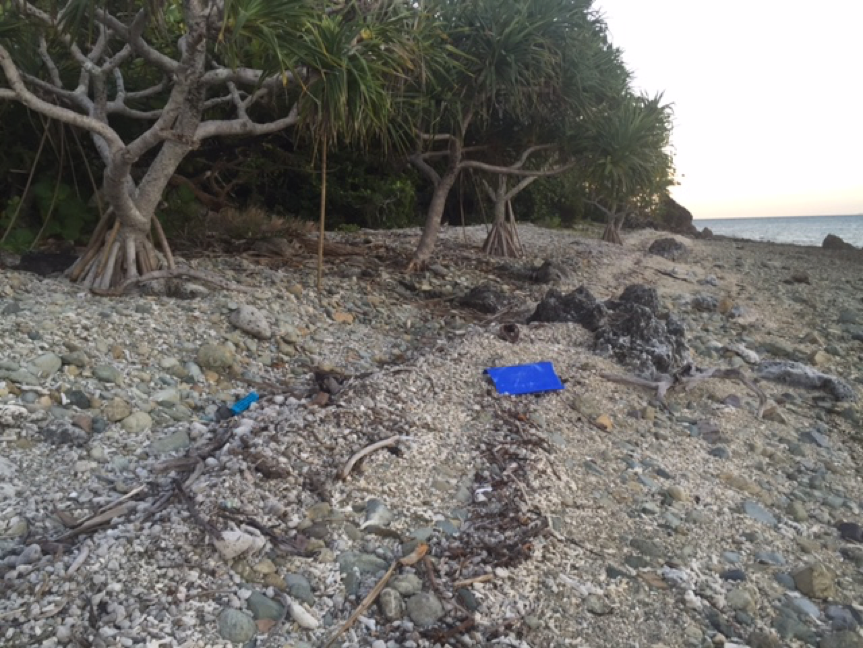 Debris on North Molle Island