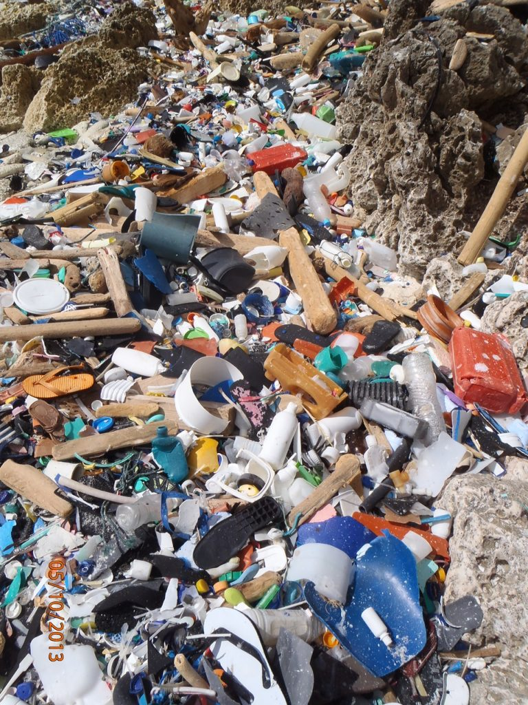 A collection of marine debris.