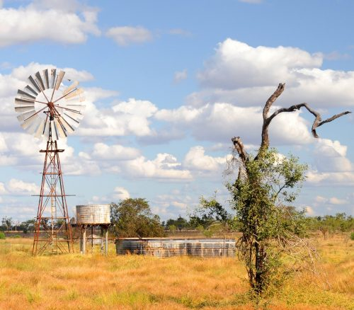 Paddock with windmill and tanks.