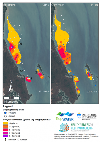 Variation in intertidal seagrass biomass and within monitoring meadows, and presence of dugong feeding trails, 2017 and 2018.