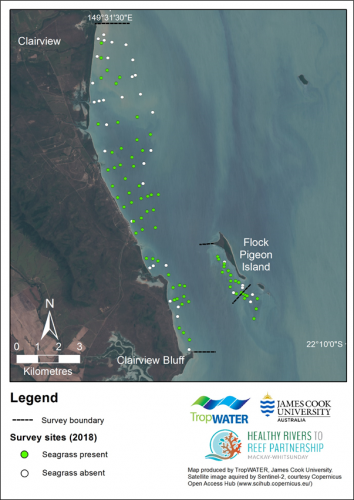 Location of intertidal survey sites with seagrass presence/absence in 2018.