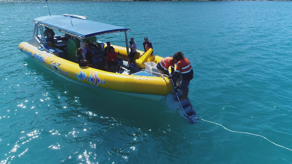 Data Logger about to be dropped in the water at Tongue Bay